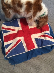 British Flag dog bed 2