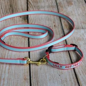 Dog collar and Leash Aqua and pink 2