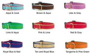 ML Personalized Dog Collar colors